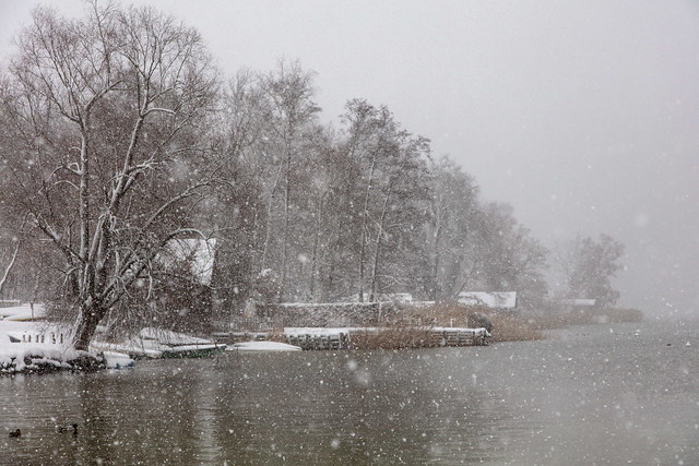 snowstorm at lakeside, Canon EOS 5DS R, Canon EF 24-105mm f/4L IS