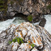 1706_0147 Cameron Creek by wild prairie man