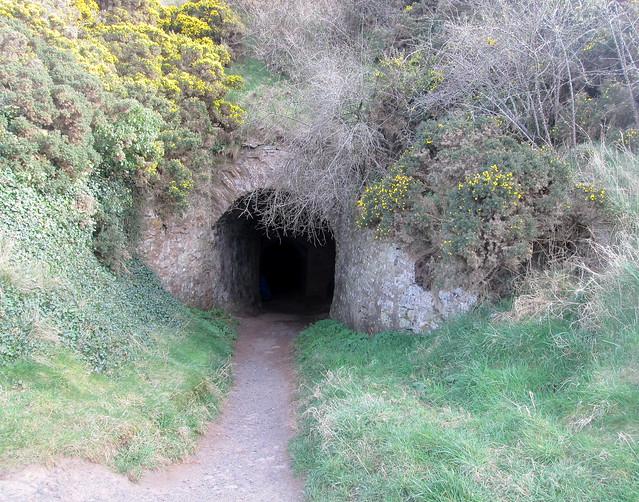 Cove Tunnel