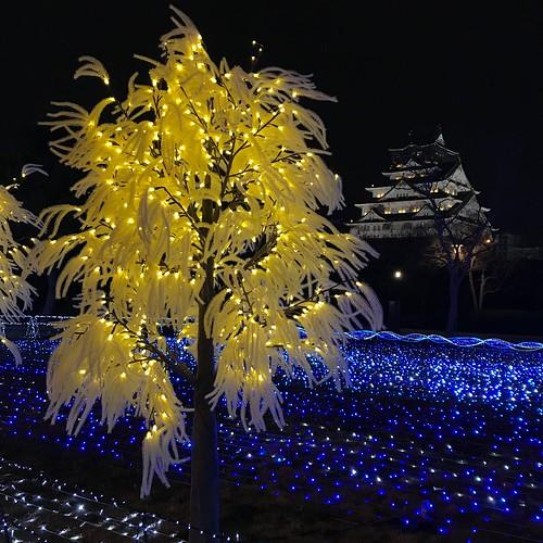 20190221 大阪城天守閣西丸庭園
