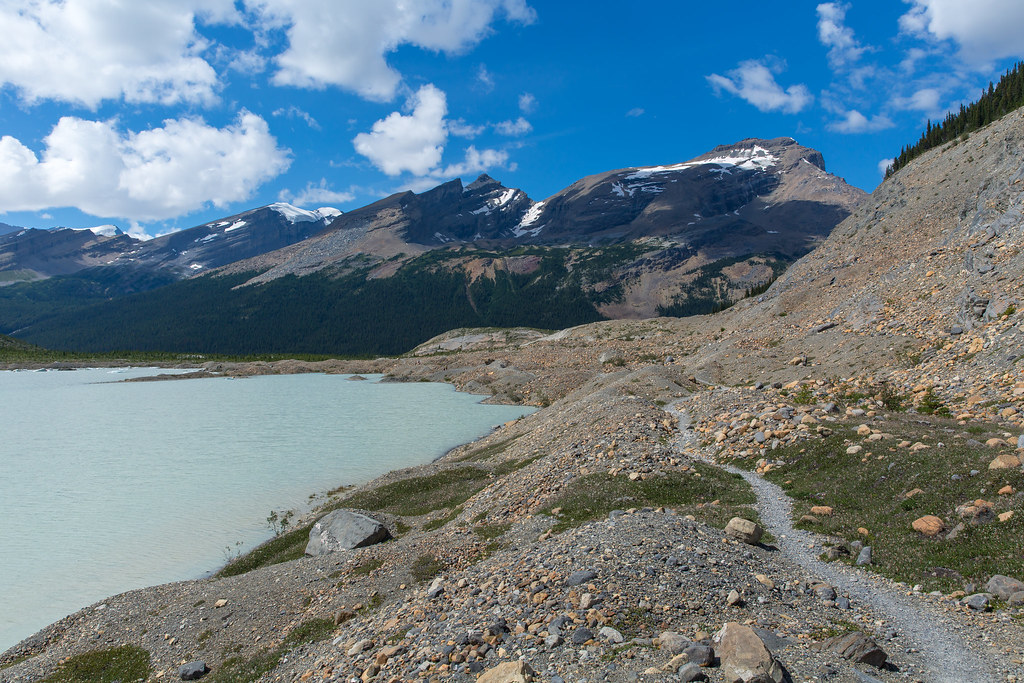 Berg Lake trail