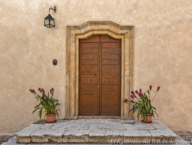 Main door and flowerpots