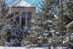 Snow Photos-15