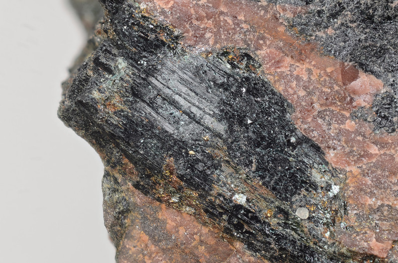 カトフォラ閃石 / Katophorite