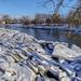 dupage_river_021819