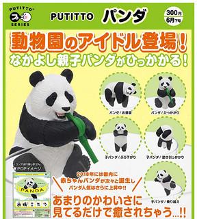 奇譚俱樂部 PUTITTO 討喜「熊貓」逗趣登場!パンダ