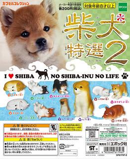 EPOCH 「柴犬 特選2」精選療癒柴犬再次登場!
