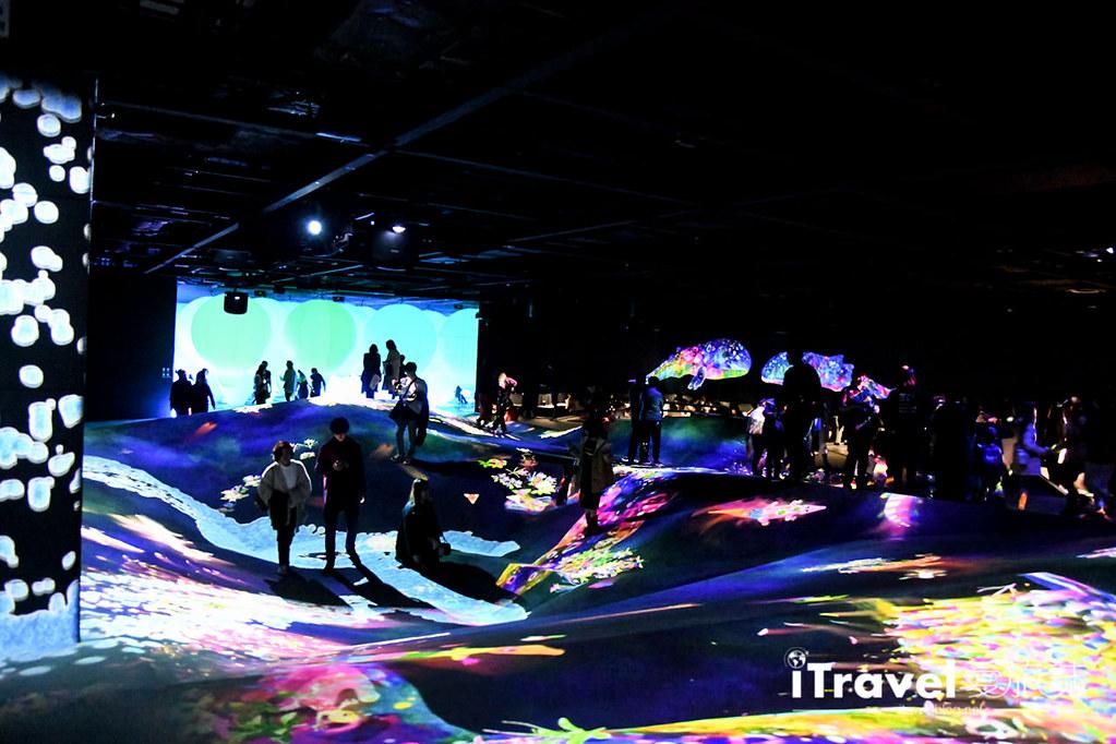 东京艺术展览 teamLab Borderless (61)