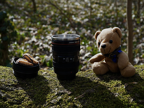 Kaffeepause im Wald