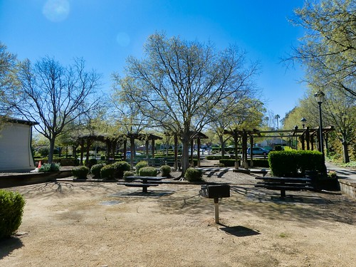 2019-03-31 - Landscape Photography - Garden - Williamson Ranch Park
