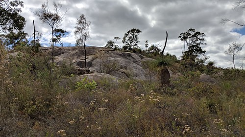 Granite outcrops in John Forrest NP