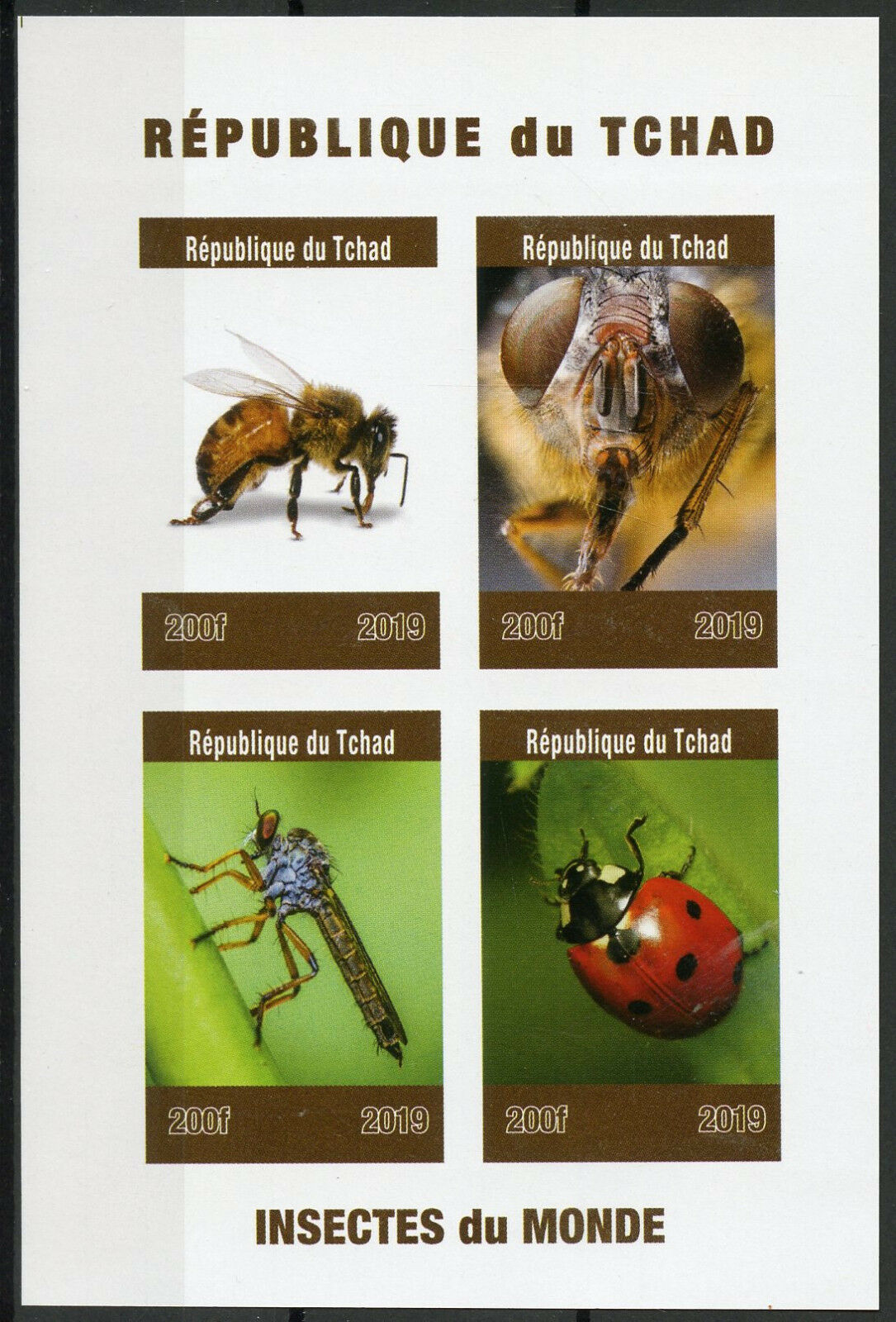 Republic of Chad - Insects of the World (January 1, 2019) sheet of 4, imperforate
