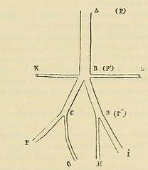 This image is taken from Page 49 of ÃÂtudes sur les maladies cérébrales et mentales