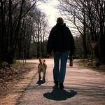 Hund & Frauchen - Der Sonne entgegen - 17. April 2006