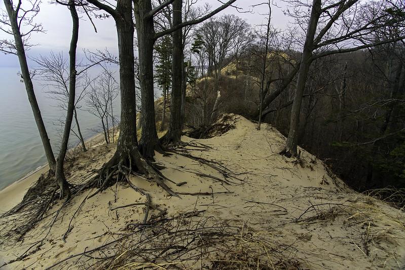 A Hike on the Ridge