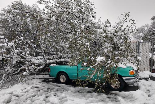 fallen tree truck damage collapse snow snowstorm 2019 redding california