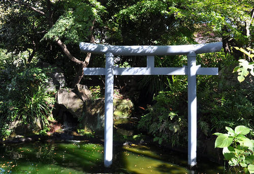 The torii in the water