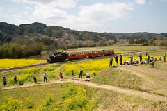 20190406小湊鉄道