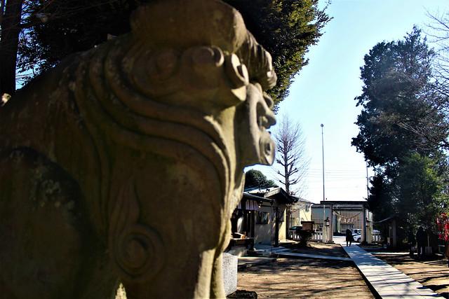 hirayanagihoshinomiyajinja006