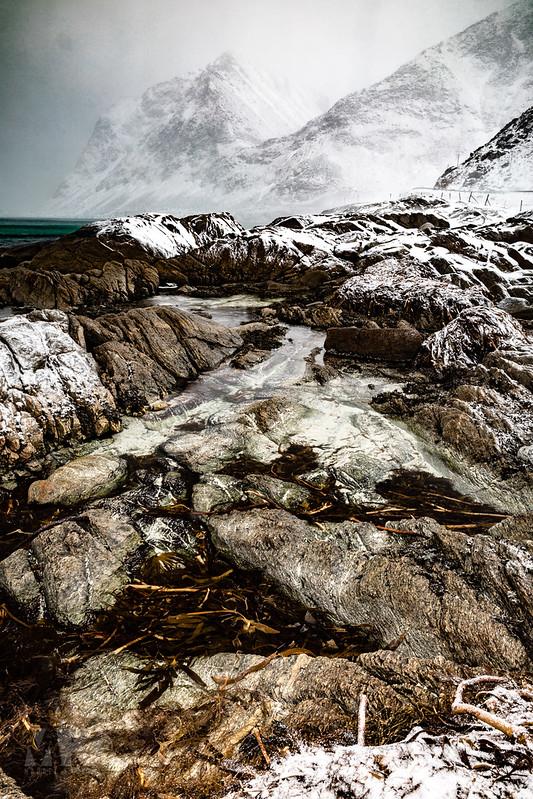 20190304-Land of Light Photography Workshop, Lofoten-007.jpg