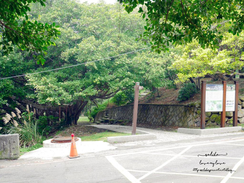 台北陽明山一日遊龍鳳谷附近好玩景點推薦硫磺谷 (1)