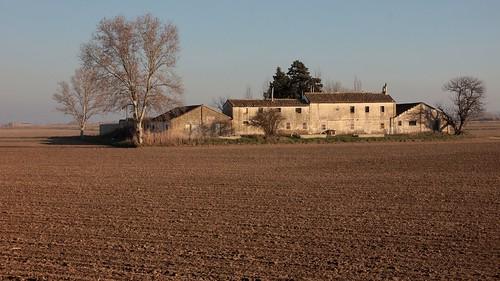 Ebro lands. Torre.