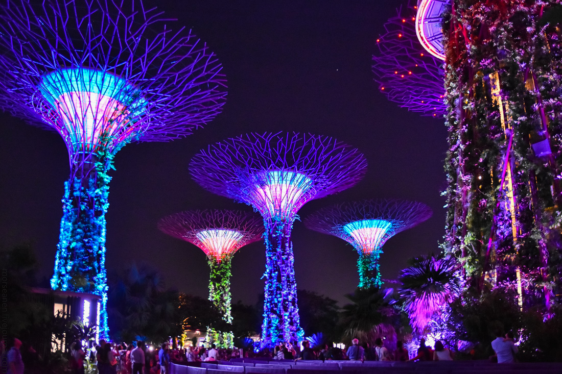 Singapore-details-(49)