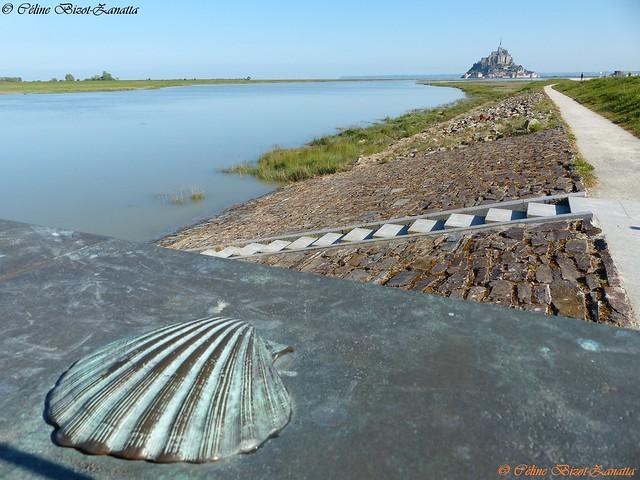 Au pied du Mont Saint Michel, j'ai vu la Coquille de St Jacques de Compostelle - Manche - Normandie - France - Europe