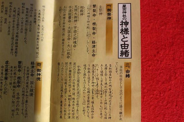 hirayanagihoshinomiyajinja-gosyuin028