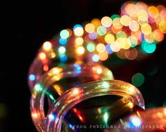 Burnside Bokeh