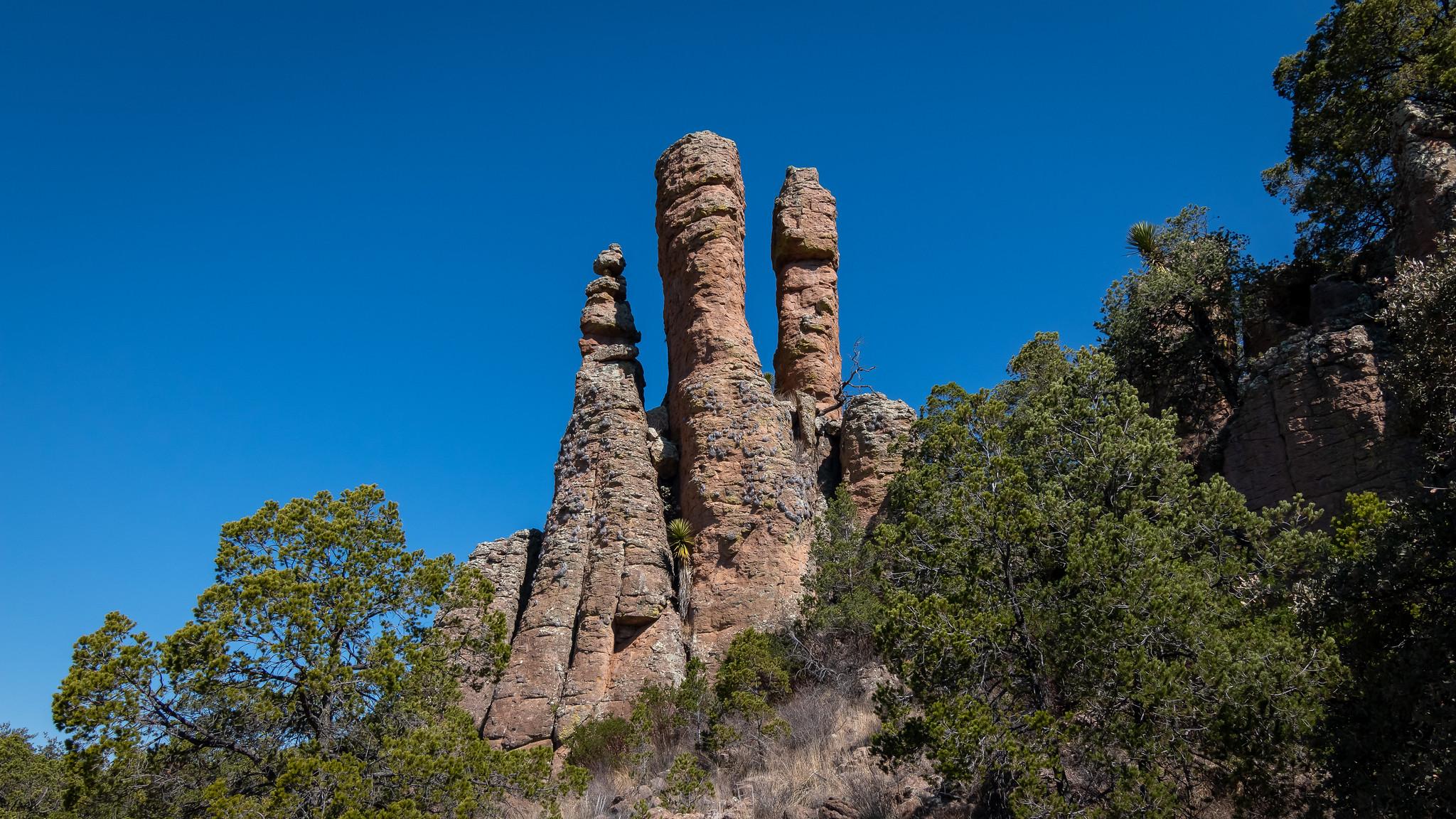 Sierra de Órganos National Park - Zacatecas - [Mexico]