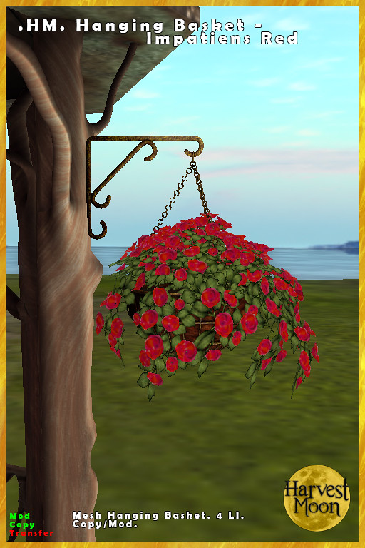 Harvest Moon – Hanging Basket – Impatiens Red