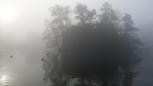 Island, misty morning