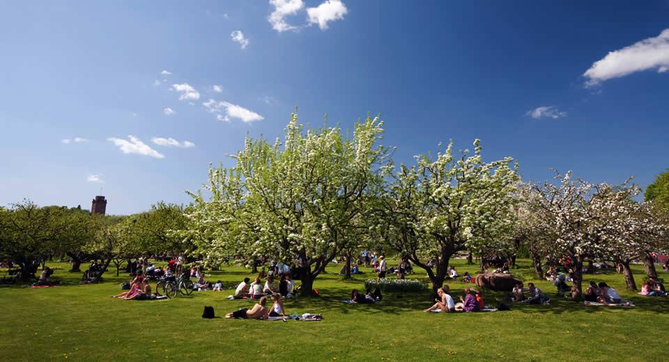 Goedkoop eten in Stockholm: picknicken in Stockholm (foto met dank aan Ola Ericson) | Mooistestedentrips.nl