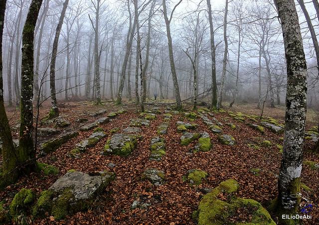Cuando vas a ver  la Cascada más alta de España... y ha desaparecido (11)