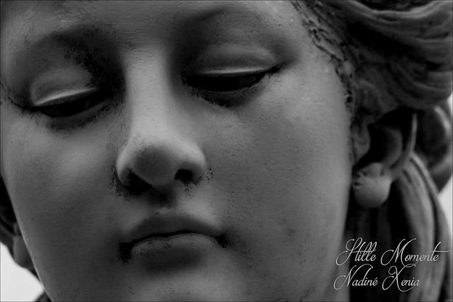 GRIEF, Canon EOS 1100D, Canon EF-S 55-250mm f/4-5.6 IS II