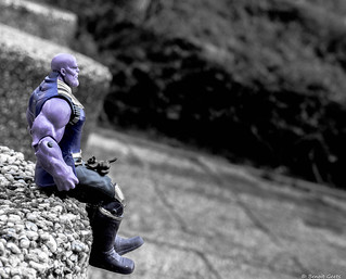 The Thanos's cat