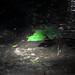 Verde iluminado por laap mx