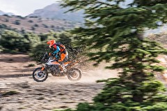 KTM 790 Adventure R 2019 - 23