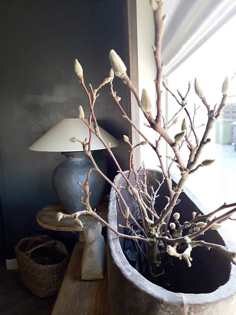Grote bloempot met takken in de vensterbank