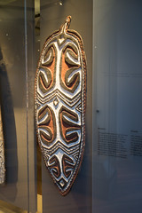 New Guinea war shield