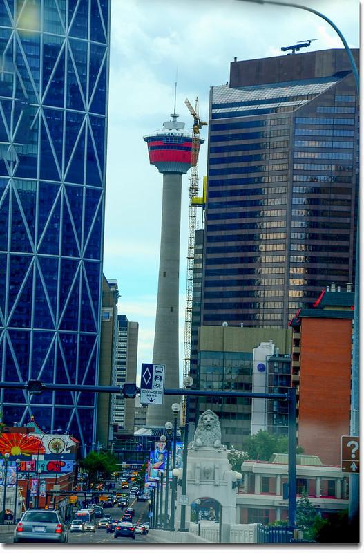 Calgary 8