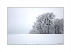 Féerie de glace... - Photo of Linzeux
