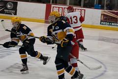 PHHS Hockey v PHN 2.14.19-37