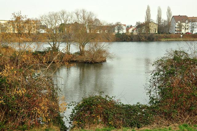 März 2019: Blick vom Neckardamm Neckarhausen nach Ladenburg ... Foto: Brigitte Stolle