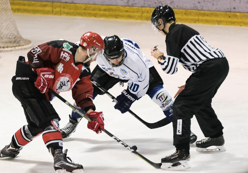 RLO 18/19 FASS Berlin vs. Dresdner Eislöwen