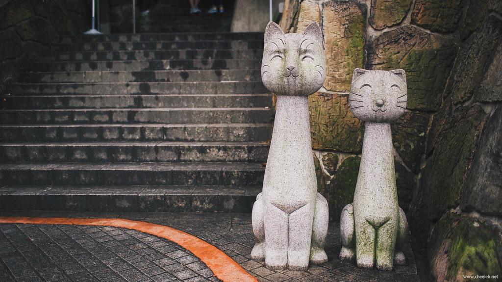 Taiwan_Flickr-132