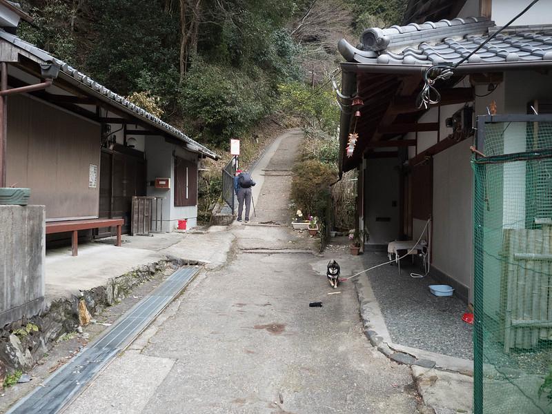 20170317-愛宕山_0062.jpg