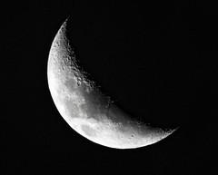 Lua 29%
