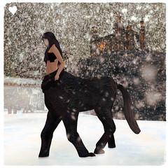 Narnia Snowstorm